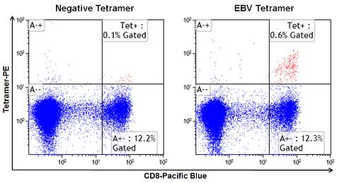 MHC Class I Human Negative Tetramer - SA-PE